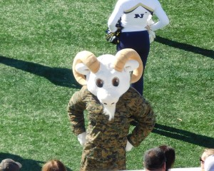 Navy Midshipmen mascot Bill came out in his camos for this game after Veterans' Day.